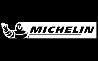 20-michelin